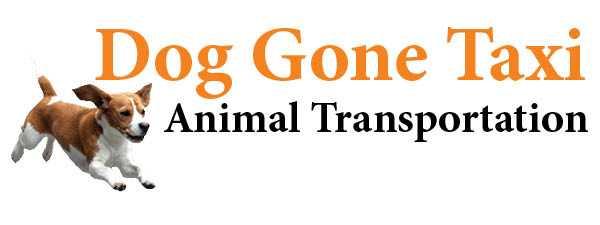 Dog Gone Taxi Logo